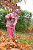 Little girl rake autumn leaves in garden Royalty Free Stock Image
