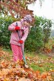 Little girl rake autumn leaves in garden royalty free stock image