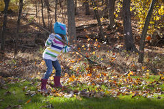 Little Girl Rakes Leaves. A little girl rakes leaves in autumn, dressed in a bright striped sweater, owl hat, and pink wellies.  Autumn leaves blow all around Royalty Free Stock Images