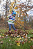 Little Girl Rakes Leaves Royalty Free Stock Photography