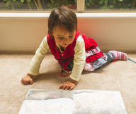 Little girl reading a book. Photo took in New Zealand, photo is usable on picture post card, calendar, gardening, magazine royalty free stock photography