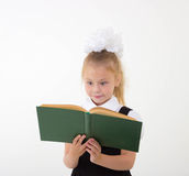 Little girl reading book, preparing for school Stock Photos