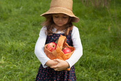 Little Girl With Red Apples In Basket Royalty Free Stock Photo