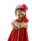 Little girl in red dress embracing a red gerbera isolated. Little girl in red dress embracing a red gerbera Stock Photos