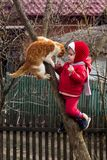 A little girl in red dressed up on a tree in the garden, along with an ore cat stock images