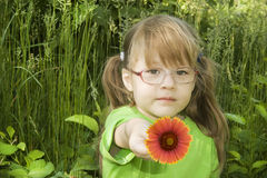 Little Girl with red flower. Small girl sits in the grass and holds the red flower in the hand Stock Photo