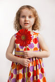 Little girl with a red flower. In hand Stock Image