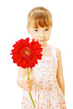Little girl with red flower. Little girl wearing summer dress giving red flower isolated on white background - mothers day concept Stock Image
