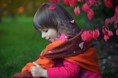 Little girl in red leaves royalty free stock images