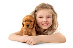 Little girl with red puppy isolated on white background. Kid Pet Friendship stock image