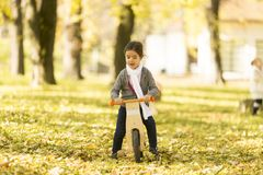 Little girl riding bicycle in autumn park. View at little girl riding bicycle in autumn park royalty free stock images