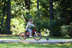 Little girl riding bike Stock Images