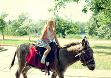 Girl on donkey. Little girl riding on a donkey in the park stock photos