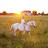 Little girl riding a horse. In a field Stock Images