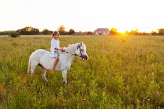 Little girl riding a horse royalty free stock photo
