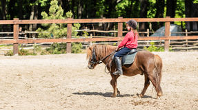 Little girl is riding a horse Stock Image