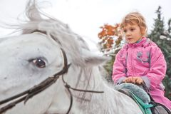 Little girl riding horse and looking aside Royalty Free Stock Images