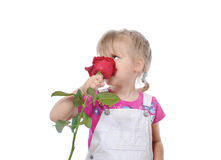 Little girl with a rose. Stock Photo