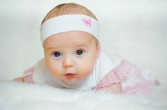 Little girl in rose. Stock Photography