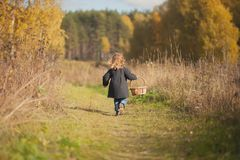 Little girl runing to the forest for the mushrooms. Cute toddler girl runing to the wild forest for searching mushrooms, fall day Royalty Free Stock Photography
