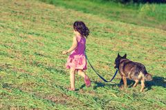 Little girl running with dog in the green field Stock Photos