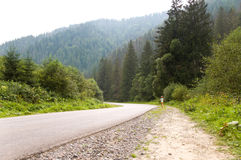 Little girl running down the road. vacation in the mountains. Royalty Free Stock Photography
