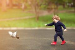 Little girl running, flaunts the pigeons, childhood. Little girl running, flaunts the pigeons on the street in town. Toning, sun light Stock Photo