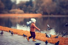 Little girl in the autumn park, runing with pigeons. Royalty Free Stock Image