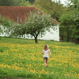 Little girl running in spring Stock Photography