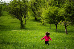 Little girl running in a spring plum orchard Stock Images