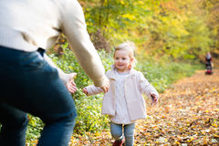 Little girl running to her father. Colorful autumn forest. Little girl running to the arms of her father. Family walk in colorful autumn forest Stock Images