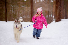 Little girl running in the woods with hasky Stock Images