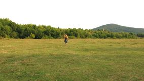 Little girl runs away. Girl runs away in front of camera. Girl running on the field. Girl with long curly hair. View from the back. On a running girl in a stock footage