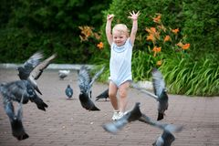 The little girl runs for the dove. Girl of European appearance. Bright emotion stock photography