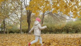 Little girl runs on yellow leaves in autumn park stock video