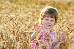 Little girl in rye wheat field Stock Image