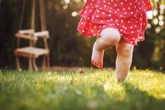 Little girl`s bare feet in the grass. stock photo