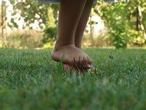 Little girl`s leg standing on an apple. Little girl`s bare foot standing on a red apple lying in the green grass in the summer garden royalty free stock image