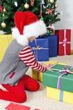 Little girl in santa's hat Stock Images