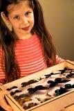 Little Girl Scrutinizes Entomology Collection of Tropical Butterflies. Ttle Girl Scrutinizes Entomology Collection of Tropical Butterflies. Study Theme royalty free stock images