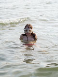 Little girl at the seaside Royalty Free Stock Photography
