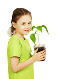 Little girl with a seedling in the pot isolated over white Royalty Free Stock Images