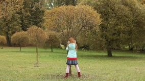 Little girl shaking a tree in the autumn park. Leaves are falling stock video footage