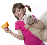 Little girl with a sheep and a cheese Stock Images