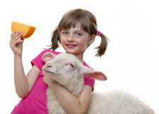 Little girl with a sheep and a cheese Royalty Free Stock Photography