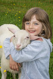 Little girl with sheep. On a meadow Stock Photography