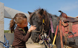 Little girl and shetmand Royalty Free Stock Images