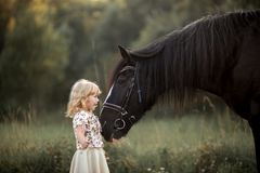 Little girl with shire horse Royalty Free Stock Images