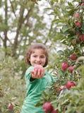 Little Girl Showing An Apple Stock Photos