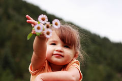 Little Girl Showing Wildflowers. Proud little girl holding wildflowers out to show them Stock Photos